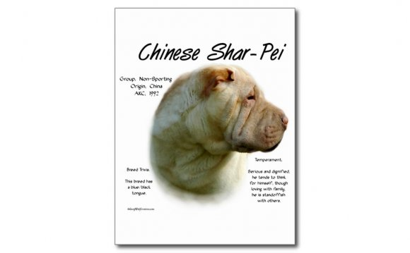 Chinese Shar Pei History