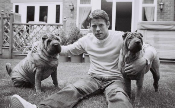 His two shar-pei dogs